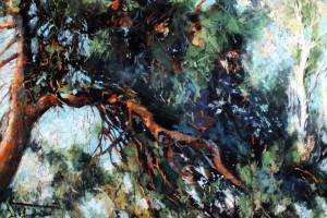 Orzechów – sosny, pastel, 54×84