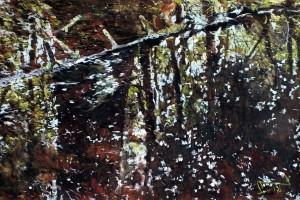 Białowieża, pastel, 54×84